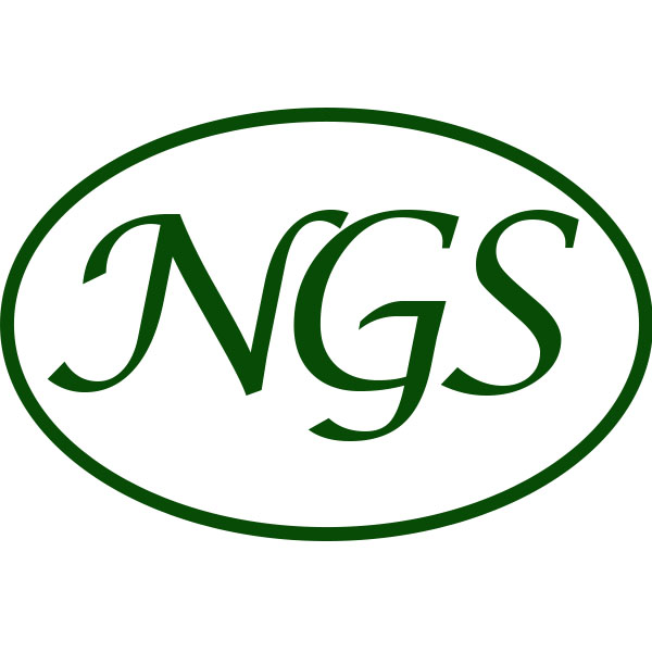 NGS Glass Services