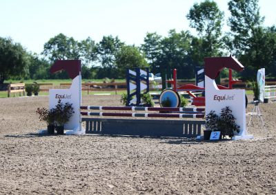 EquiJet, Show Jump For Heart 2018, Ten Sixty Stables
