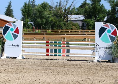 New Roads Automotive Group, Show Jump For Heart 2018, Ten Sixty Stables