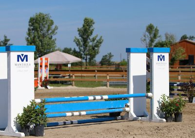 Mantella, Show Jump For Heart 2018, Ten Sixty Stables
